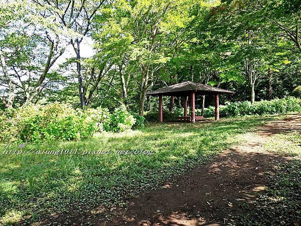 天上山公園 (15).jpg