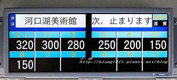 巴士紅線+自然館 (5).jpg