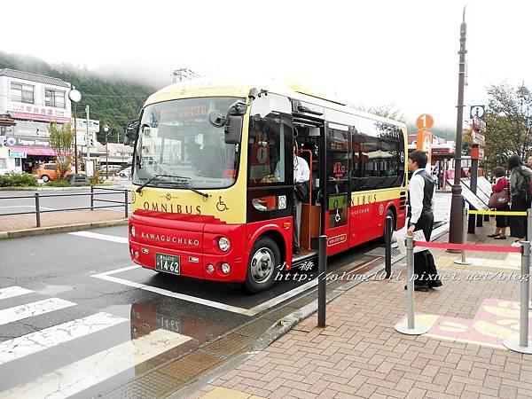 巴士紅線+自然館 (3).jpg