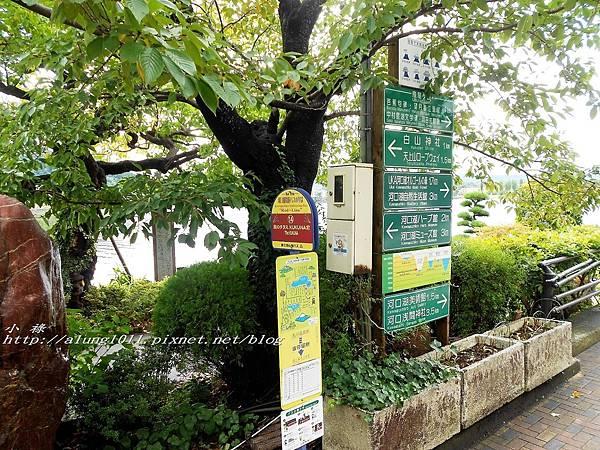巴士紅線+自然館 (9).jpg