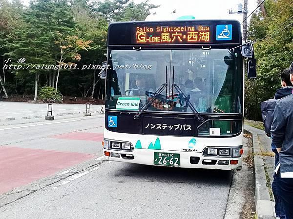 富岳風穴 (11).jpg