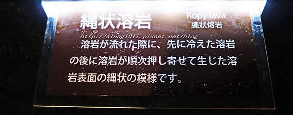 富岳風穴 (41).jpg