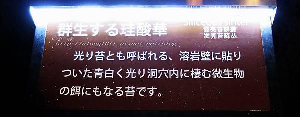 富岳風穴 (45).jpg