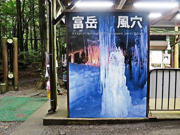 富岳風穴 (55).jpg