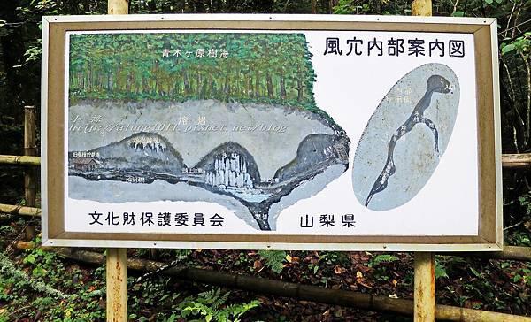 富岳風穴 (54).jpg