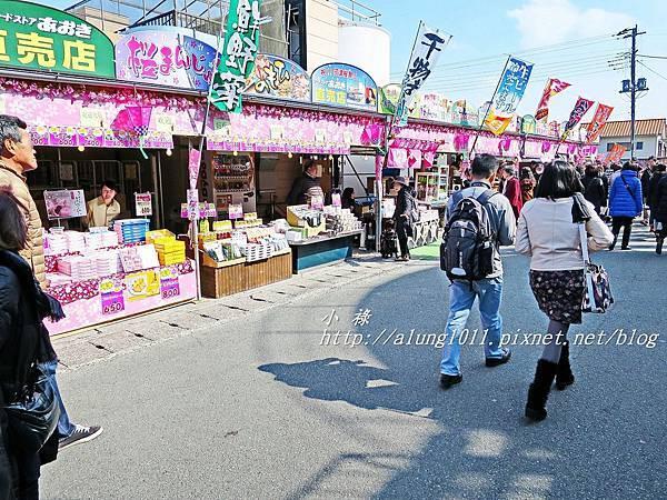 河津櫻祭 (18).JPG