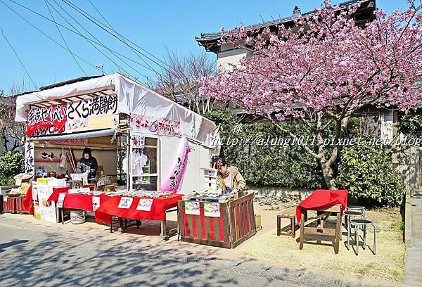 河津櫻祭 (33).JPG