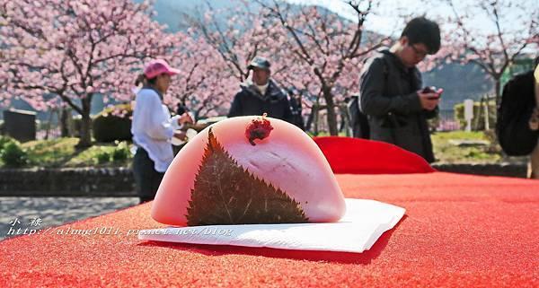 河津櫻祭 (38).jpg