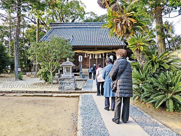 河津櫻祭 (72).JPG