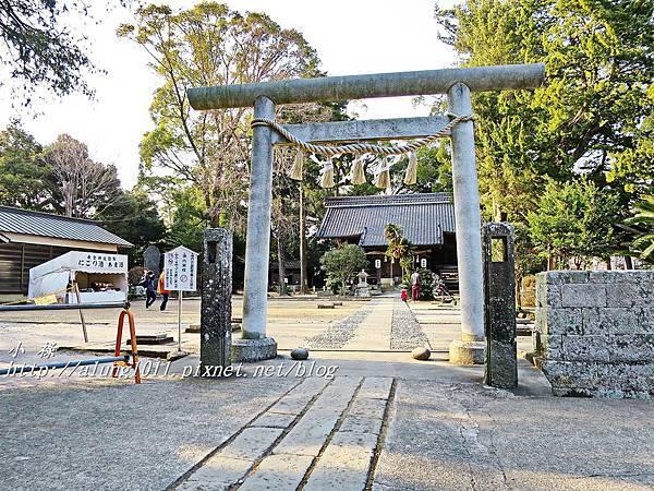 河津櫻祭 (71).JPG