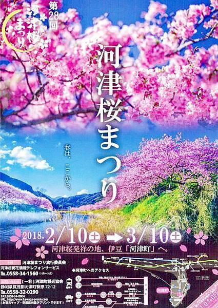 河津櫻祭 (89).jpg