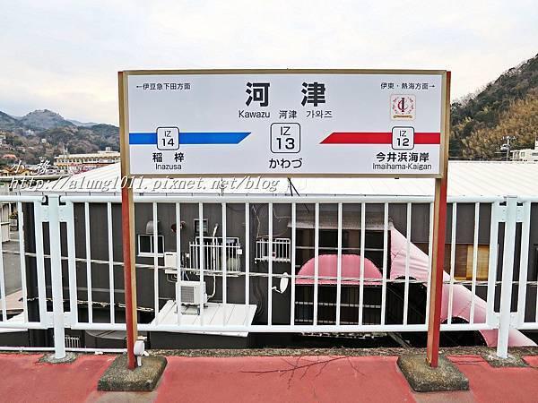 河津櫻祭 (95).JPG