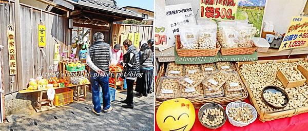 河津櫻祭 (100).jpg