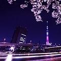 夜櫻船遊隅田川 (54).jpg