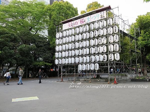 東京櫻花集錦 (1).jpg