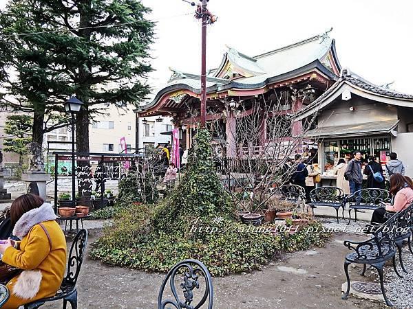 今戶神社 (15).jpg