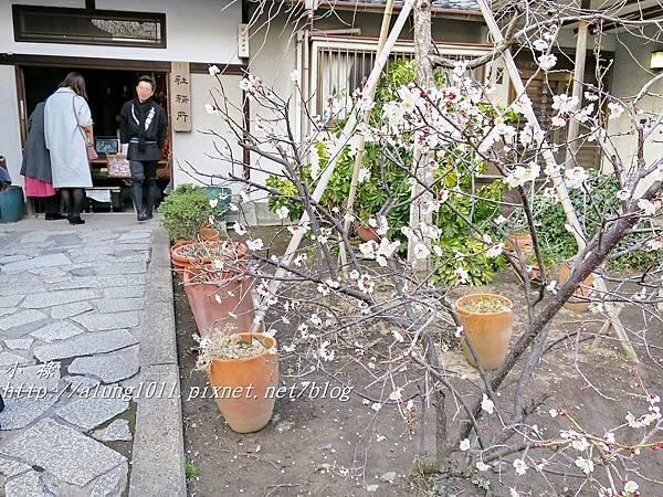 今戶神社 (33).JPG