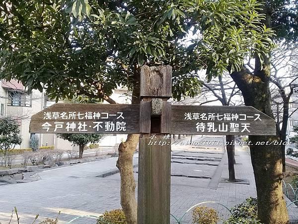 今戶神社 (45).jpg