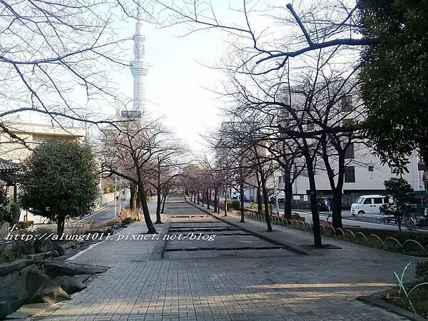 今戶神社 (46).jpg