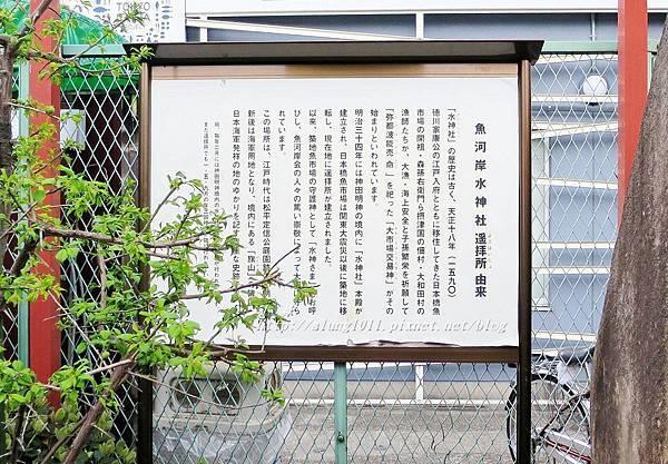 築地魚河岸 (4).JPG