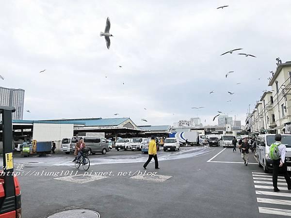 築地魚河岸 (1).jpg