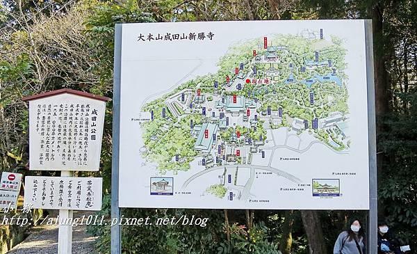 成田山梅祭 (8).JPG
