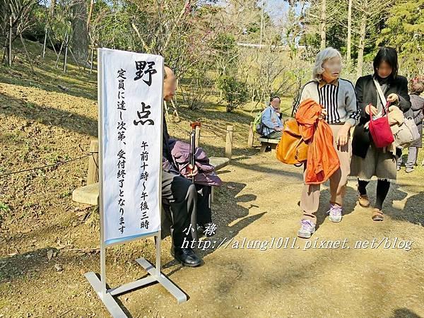 成田山梅祭 (16).JPG