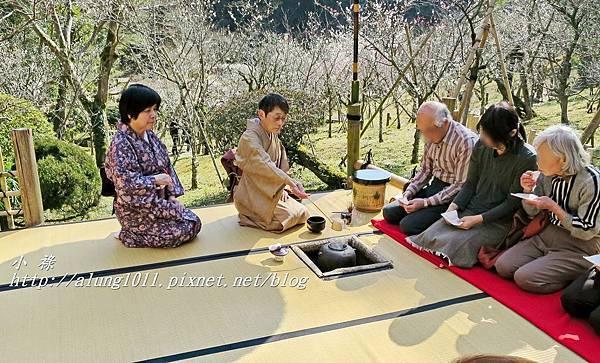 成田山梅祭 (21).JPG