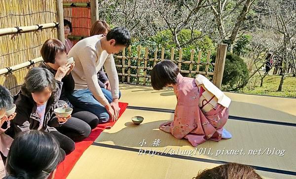 成田山梅祭 (23).JPG
