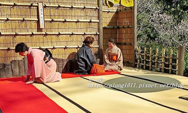成田山梅祭 (27).JPG