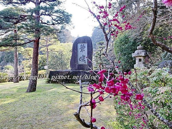 成田山梅祭 (42).JPG
