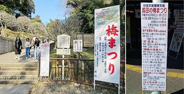 成田山梅祭 (26).jpg