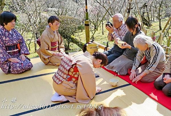 成田山梅祭 (67).JPG