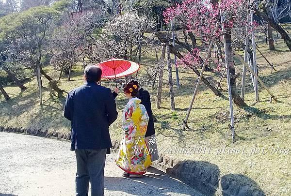 成田山梅祭 (65).jpg