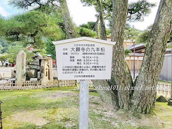 大願寺 (8).JPG
