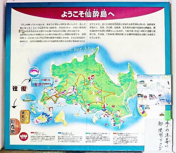 仙醉島 (6).JPG