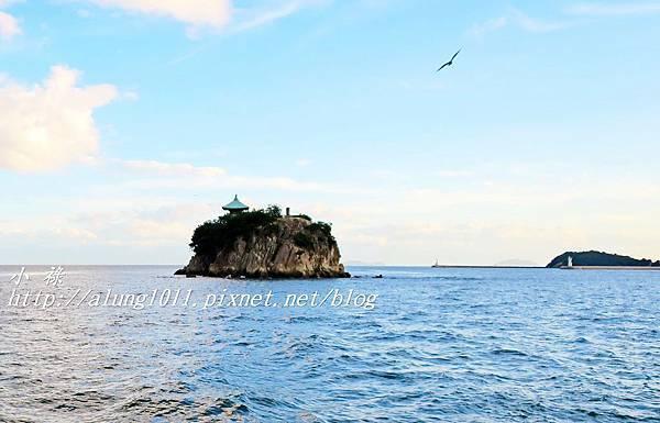 仙醉島 (15).JPG