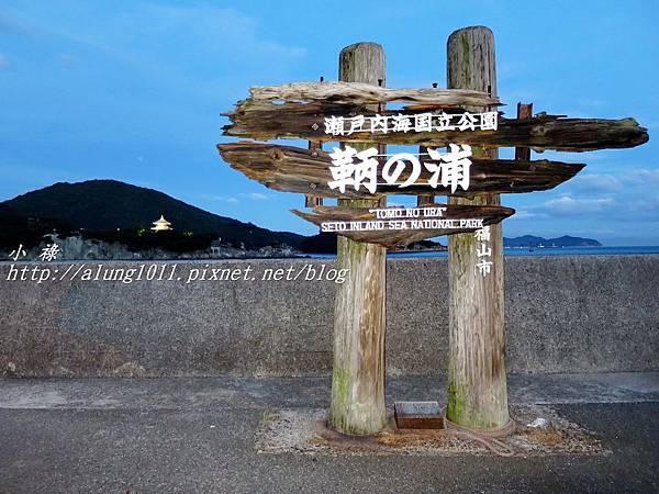 仙醉島 (42).JPG