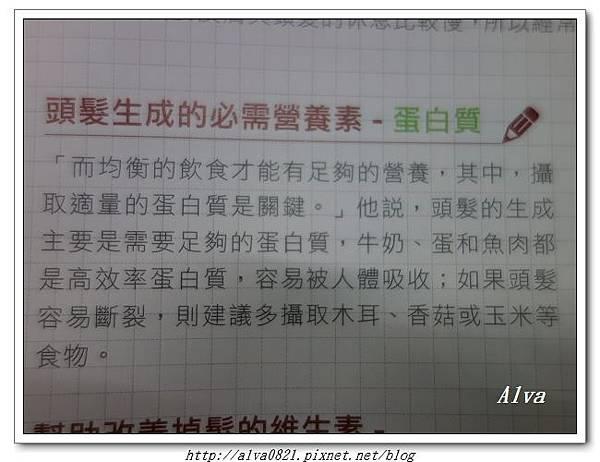 DSC01841.jpg