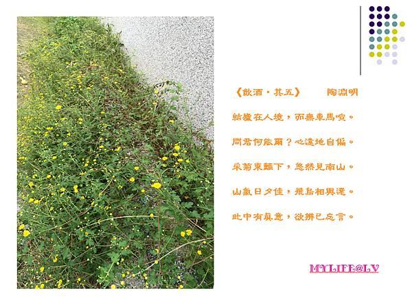 題詩.bmp