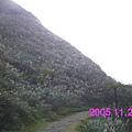 IMAG0017