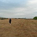 大草原跑跑