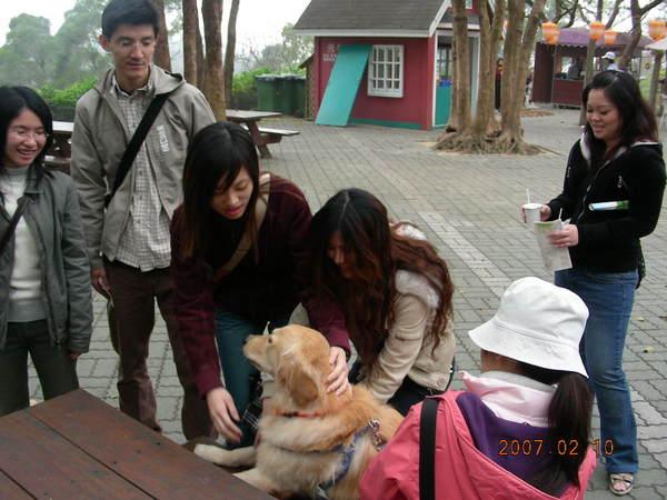 遇到一群愛狗人士