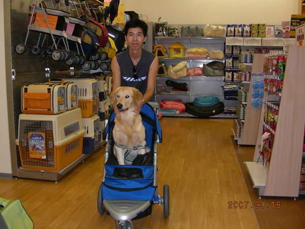 第一個景點,夢時代~~~狗用推車