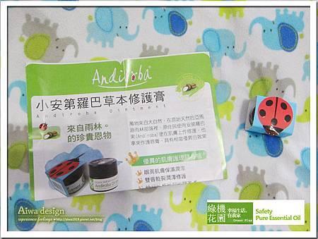 【綠機花園Green Plus】Andi小安第系列 小安第・羅巴草本修護膏-01.jpg