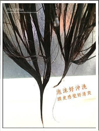 ELASTINE 基礎長效修護洗髮精,下午4點你依然保持豐盈彈潤-11.jpg