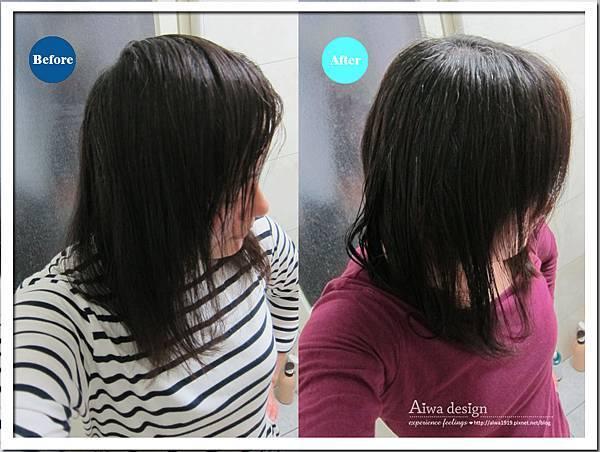 施巴護色亮采洗髮乳 給你頭皮與秀髮更完整的呵護-06.jpg