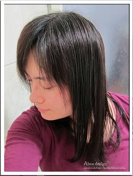 施巴護色亮采洗髮乳 給你頭皮與秀髮更完整的呵護-10.jpg