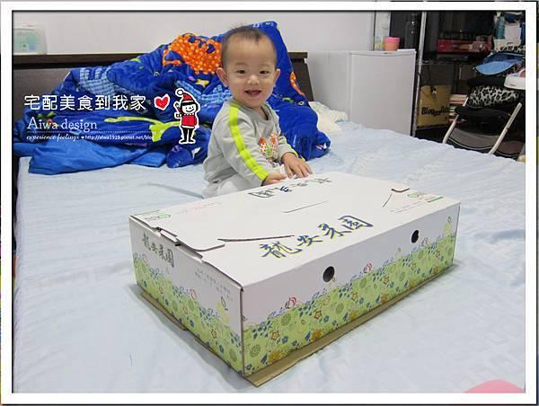 新興梨禮盒《新社龍安果園水梨》果實豐潤飽滿-01.jpg