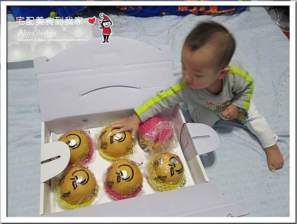 新興梨禮盒《新社龍安果園水梨》果實豐潤飽滿-04.jpg